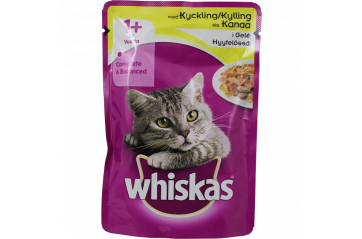 Whiskas 1+ chicken in gel 100g