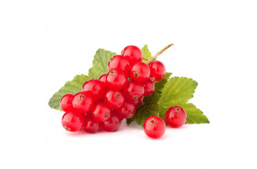 Redcurrants 125g