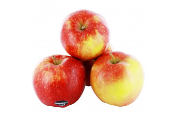 Apples Jonagold ca 300 gr./pc